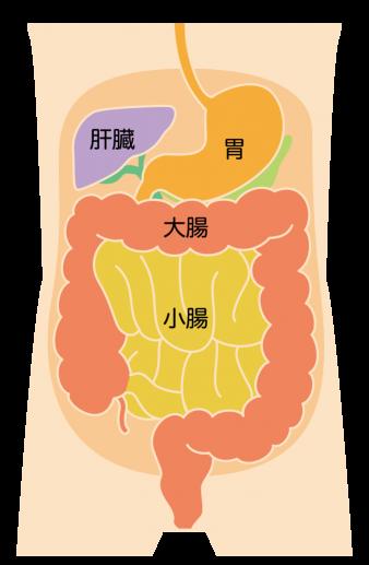 f:id:okiraku_daisuki:20170621183746p:plain