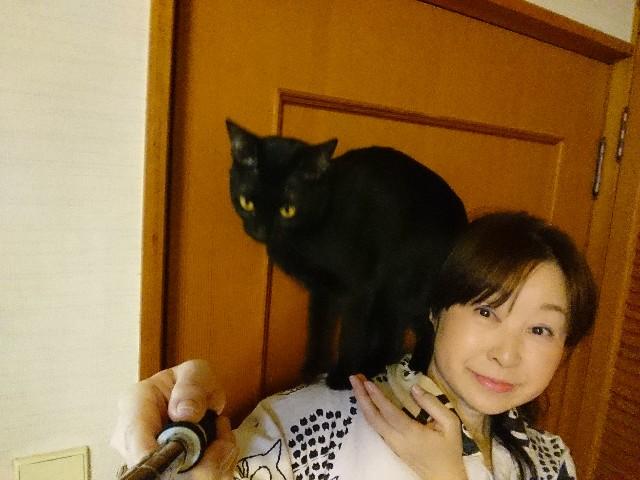 f:id:okirakuya-kimono:20180412094453j:image