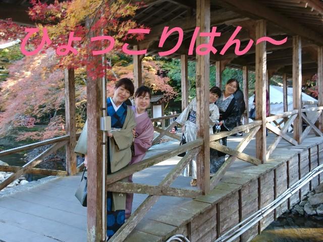f:id:okirakuya-kimono:20191122112536j:image