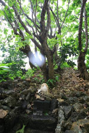f:id:okkachan:20100309101509j:image