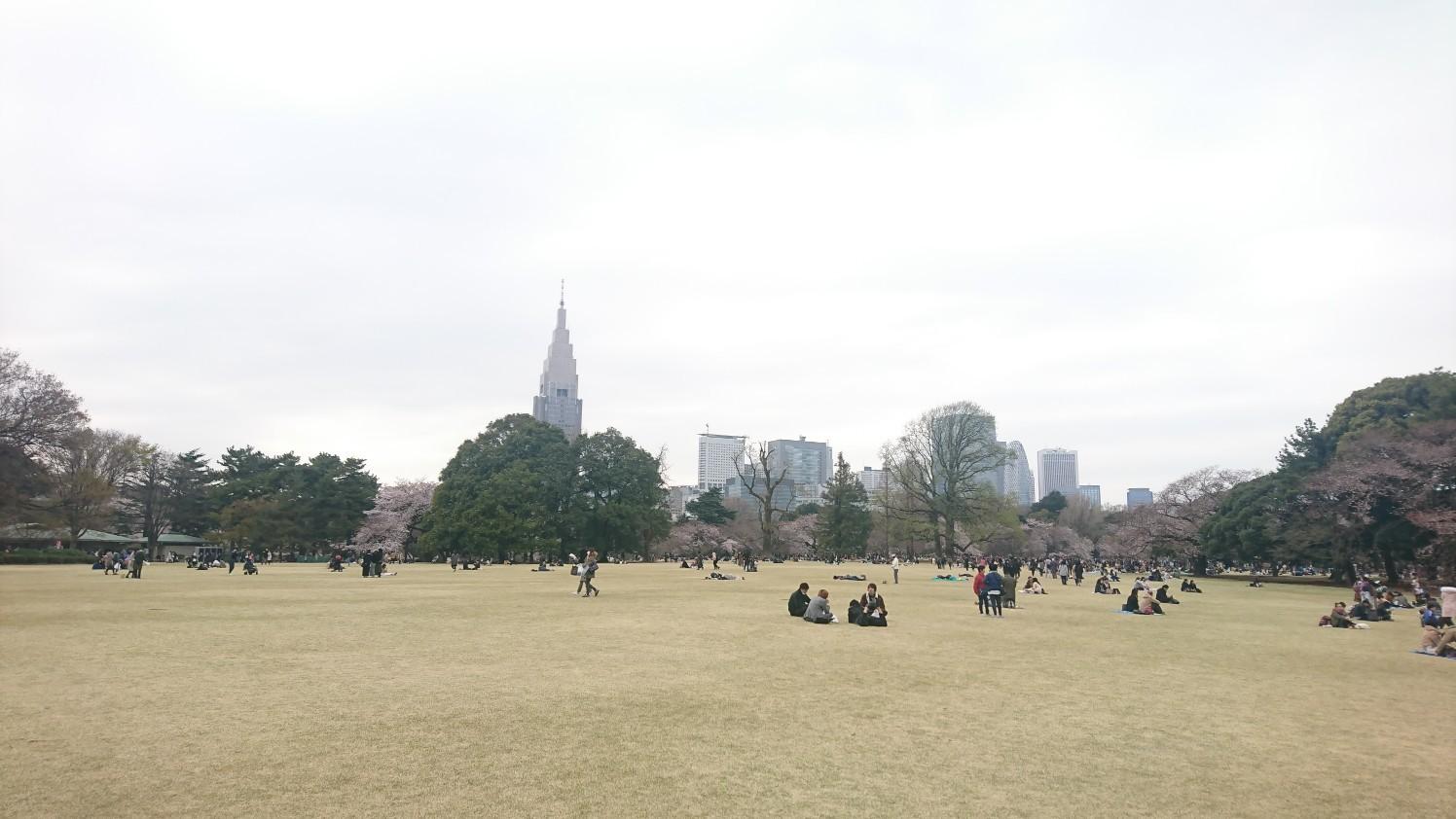 f:id:okkei:20190402195112j:image