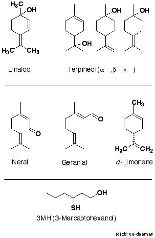 薫りの構造式