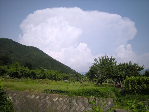 f:id:okkuu-daaman:20080705151514j:image:w150,right