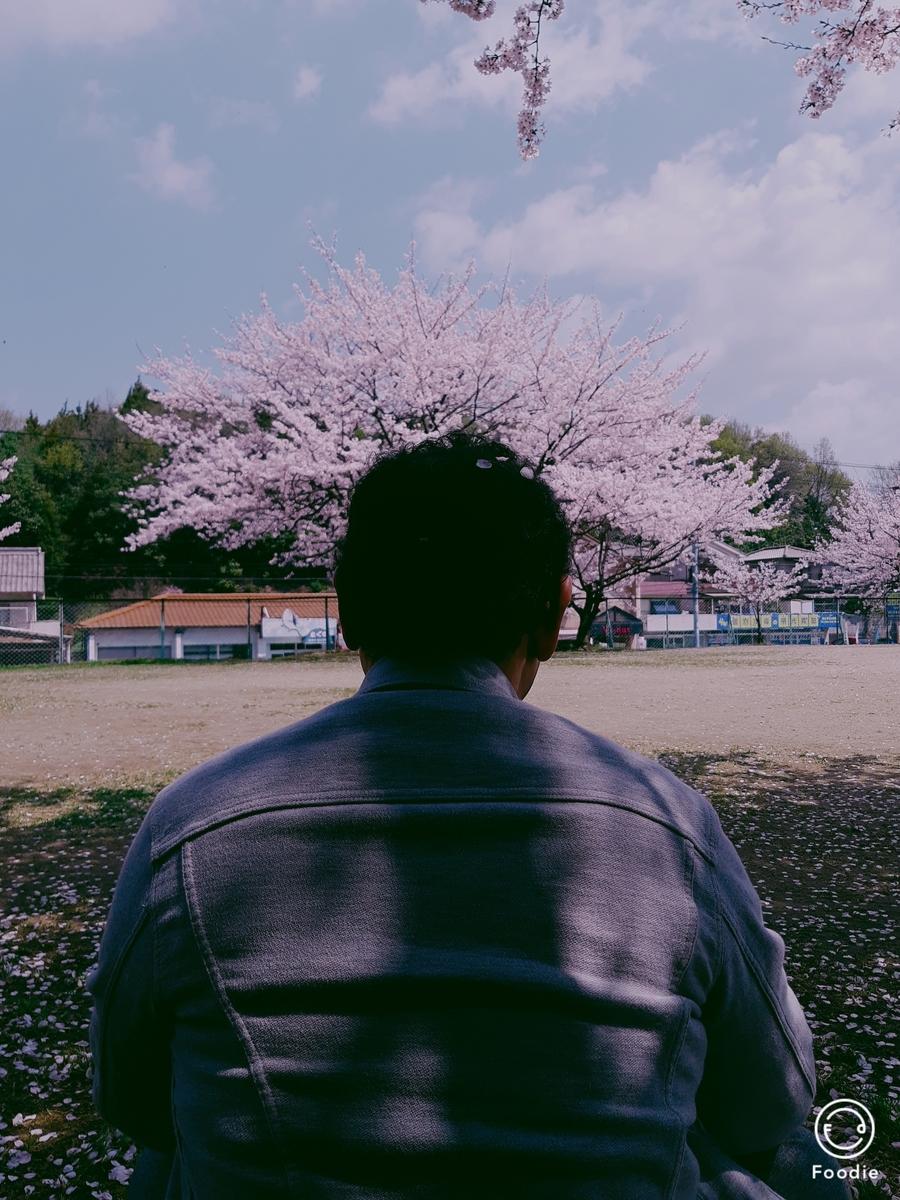 f:id:oko-sangokushi:20190408114736j:plain