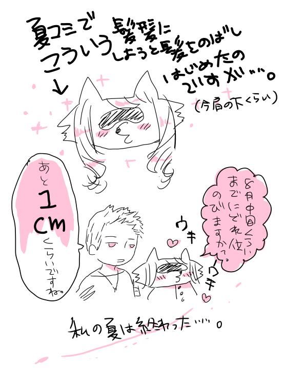 f:id:okome_chan:20100716225536p:image