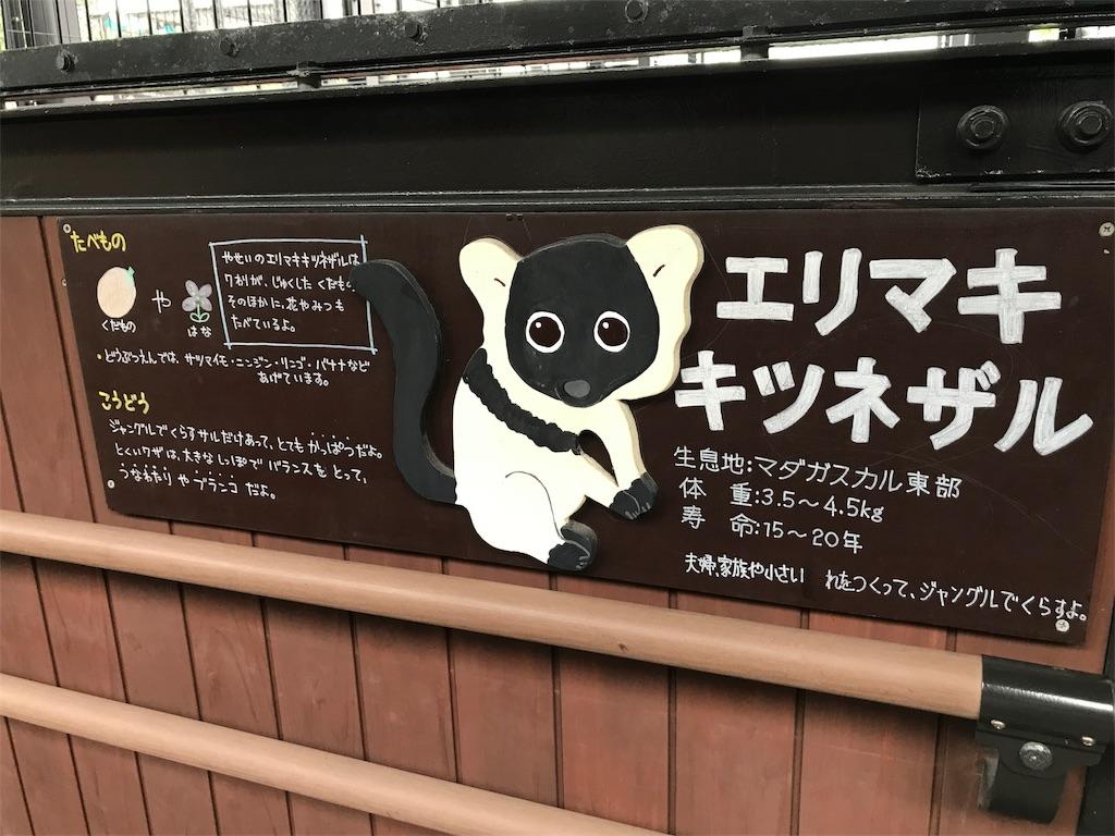 f:id:okomo-t-aig-a-kahiro:20180919203727j:image