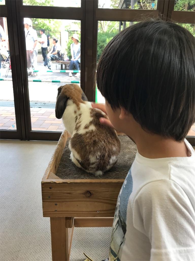 f:id:okomo-t-aig-a-kahiro:20181009163828j:image