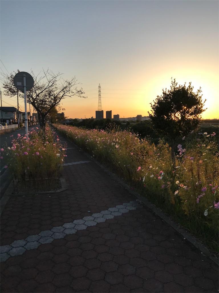 f:id:okomo-t-aig-a-kahiro:20181021193827j:image