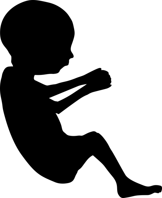 f:id:okopoya:20170321161455p:plain