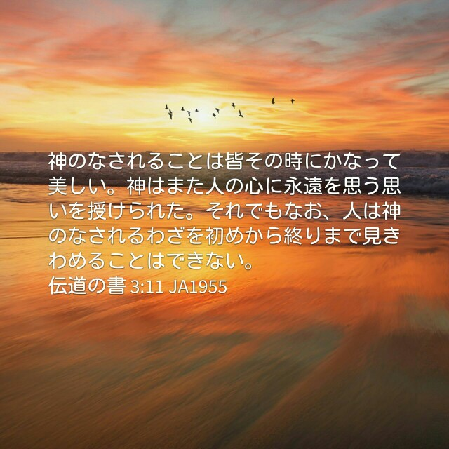 f:id:okosun:20170223184616j:image