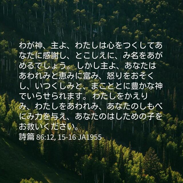 f:id:okosun:20170405212530j:image