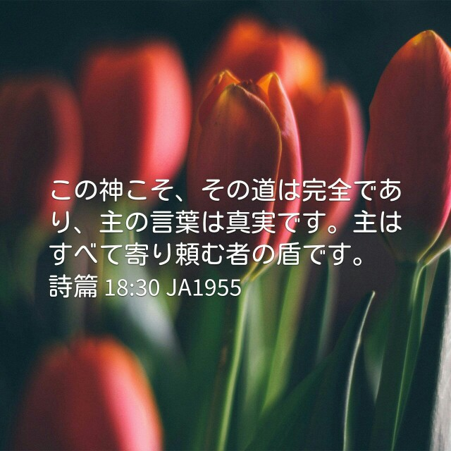 f:id:okosun:20170406101258j:image