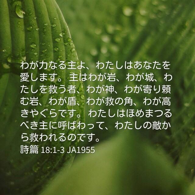 f:id:okosun:20170406101319j:image