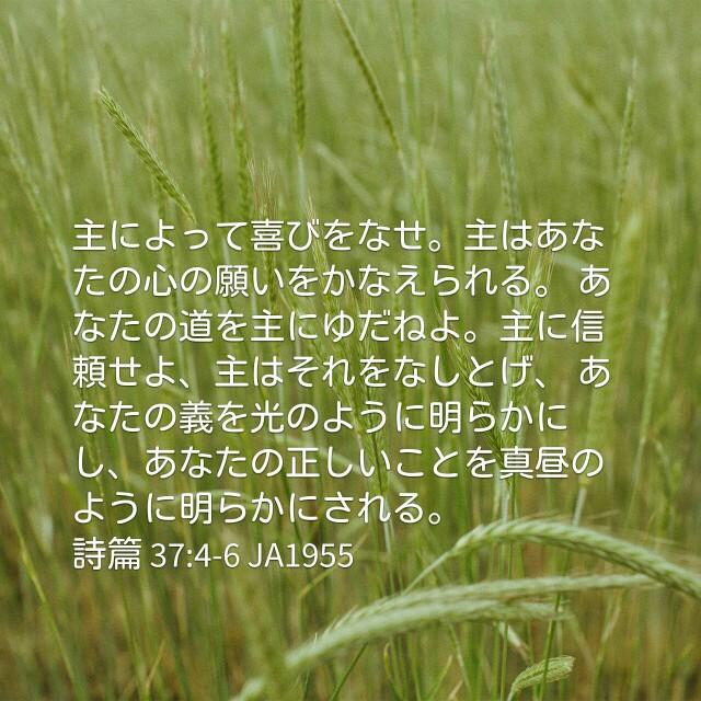 f:id:okosun:20170406101344j:image