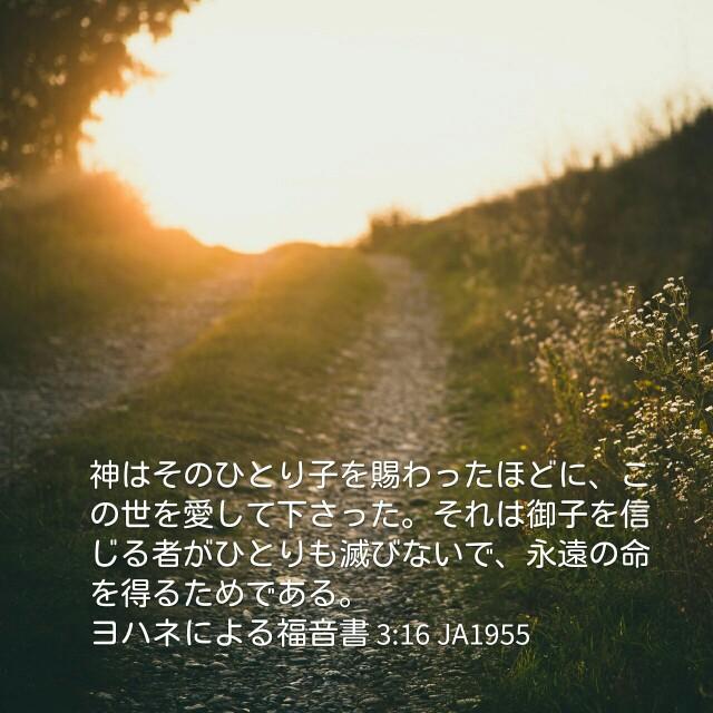 f:id:okosun:20170413075358j:image