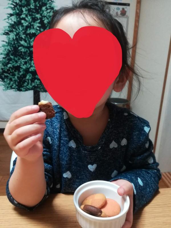 f:id:okotanushi:20190207190010j:plain