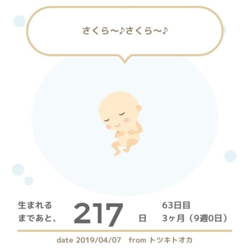 f:id:okotanushi:20190430161537j:plain