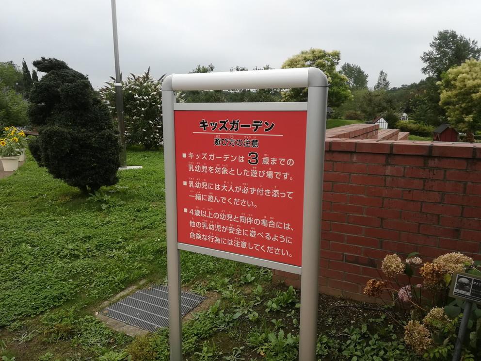 f:id:okotanushi:20190725125818j:plain