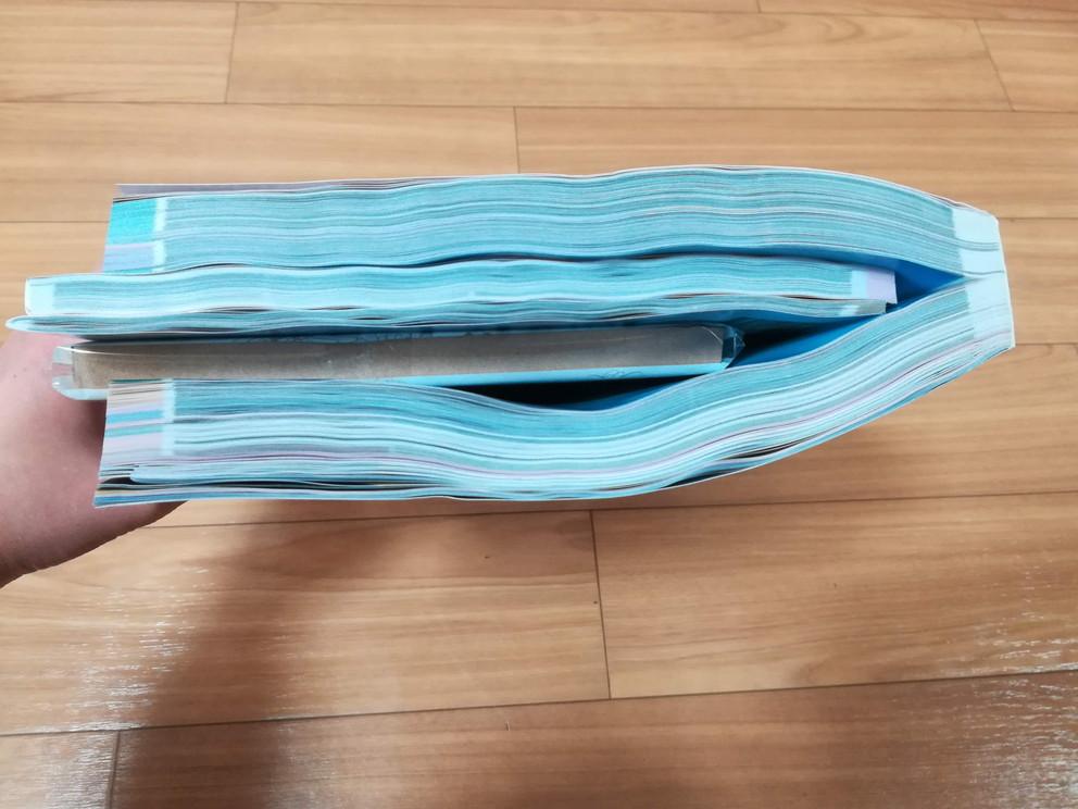 f:id:okotanushi:20200127114406j:plain