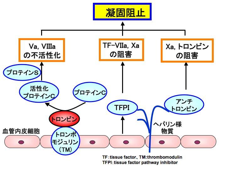プロテインCとプロテインSとトロンボモジュリン