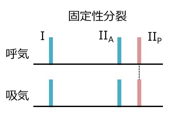2音の固定性分裂