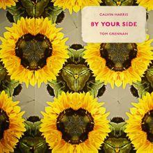 【歌詞和訳】By Your Side - Calvin Harris ft.Tom Grennan