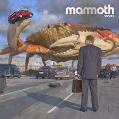 【歌詞和訳】Don't Back Down:ドント・バック・ダウン - Mammoth WVH