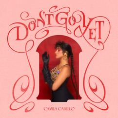 【歌詞和訳】Don't Go Yet:ドントゴーイエ - Camila Cabello:カミラ・カベロ