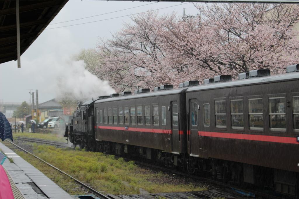 f:id:okuchichibu551:20170620220719j:plain