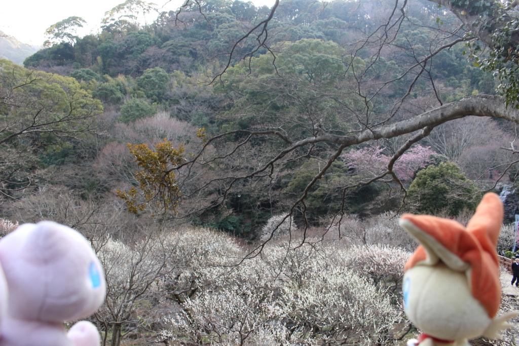f:id:okuchichibu551:20180315211957j:plain