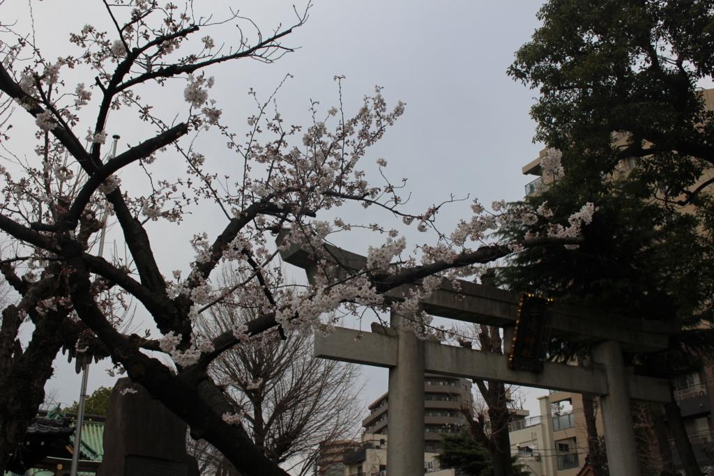 f:id:okuchichibu551:20180401164743j:plain