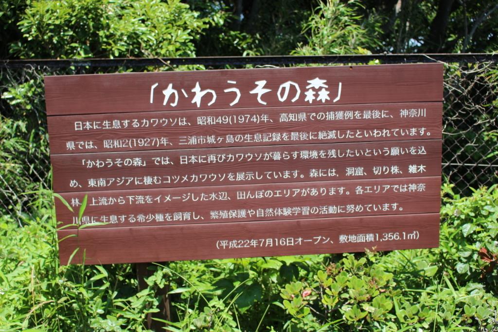 f:id:okuchichibu551:20180604220432j:plain