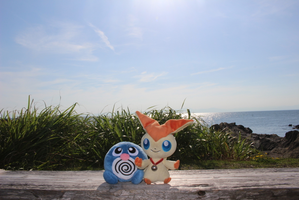 f:id:okuchichibu551:20180613201050j:plain