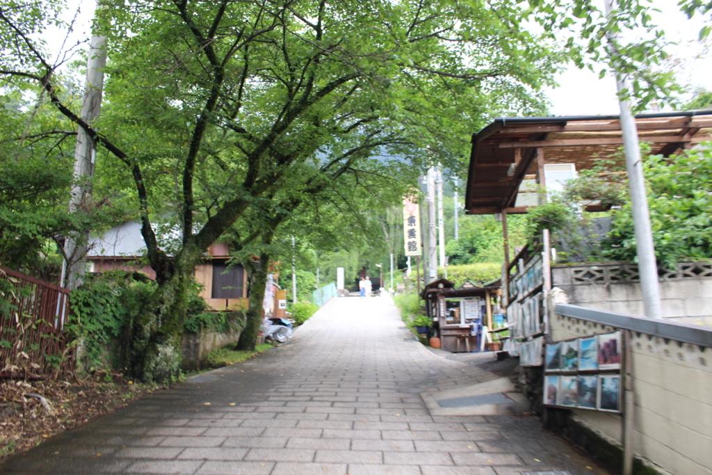 f:id:okuchichibu551:20180630155311j:plain