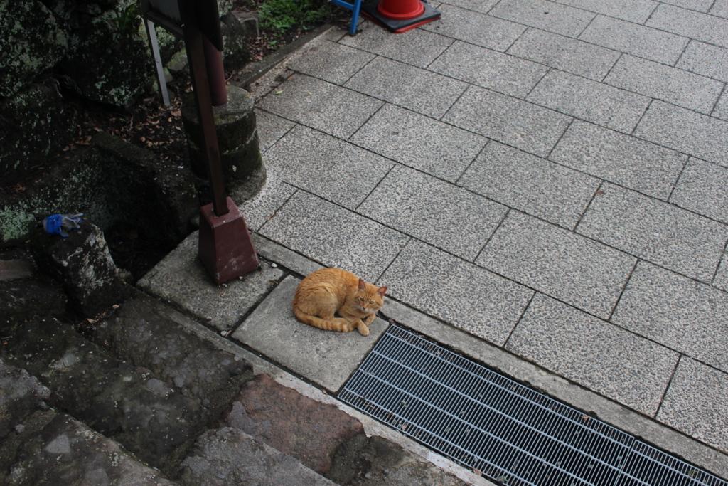f:id:okuchichibu551:20180630161144j:plain