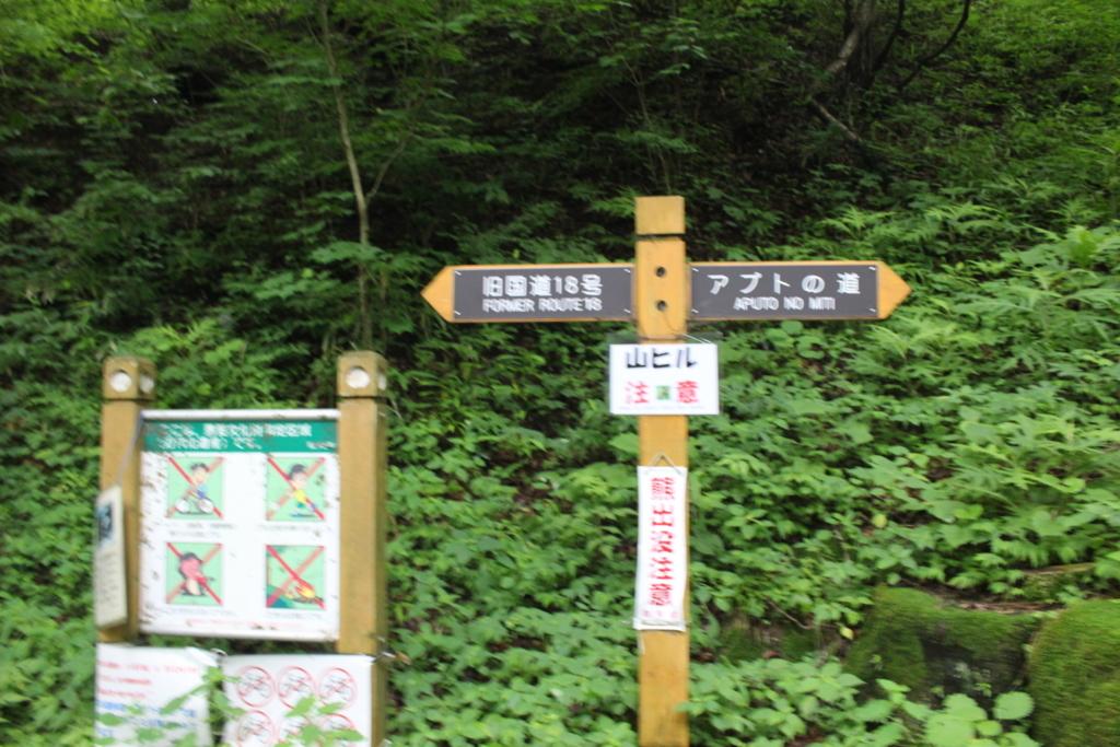 f:id:okuchichibu551:20180701184328j:plain