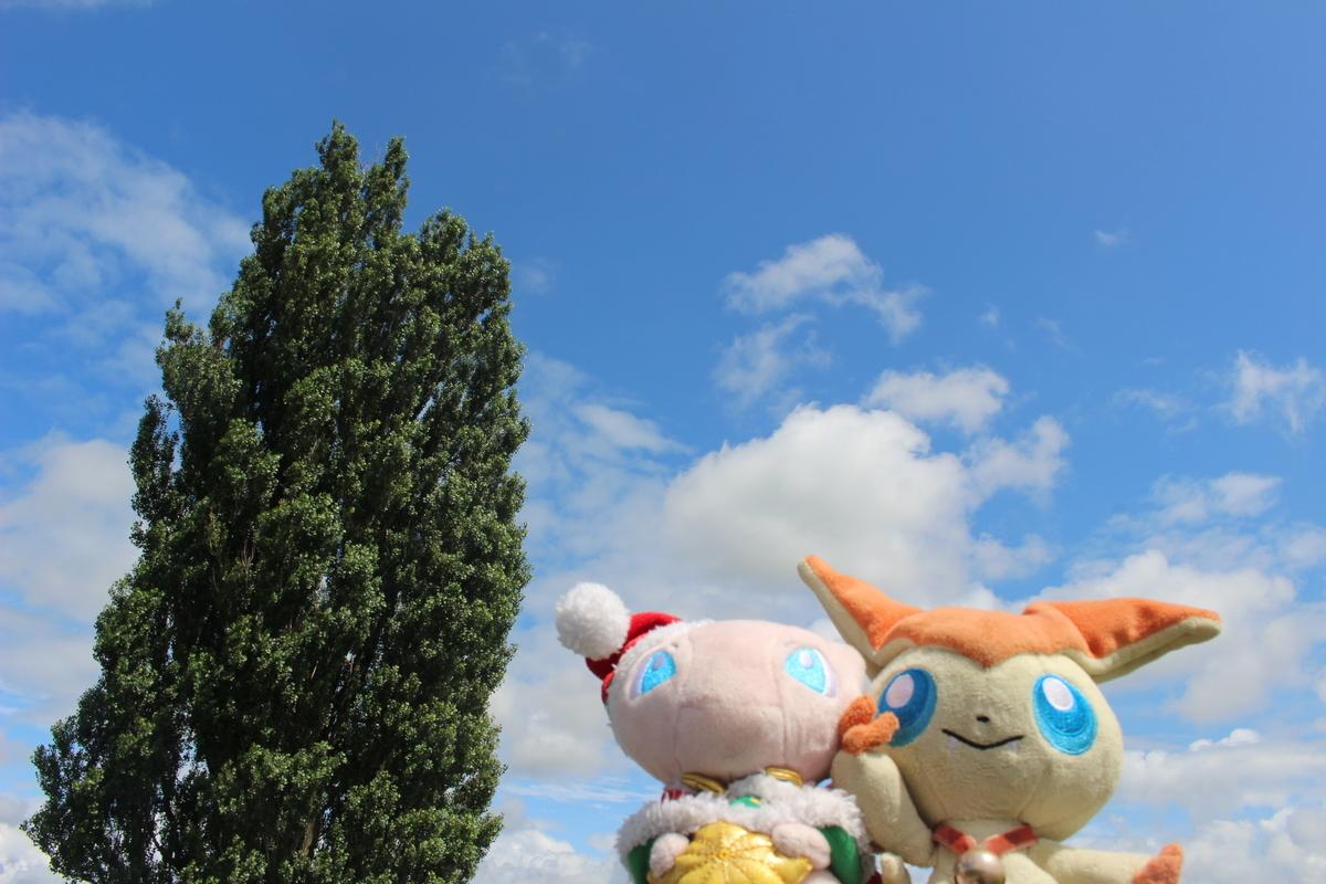 f:id:okuchichibu551:20190928165205j:plain