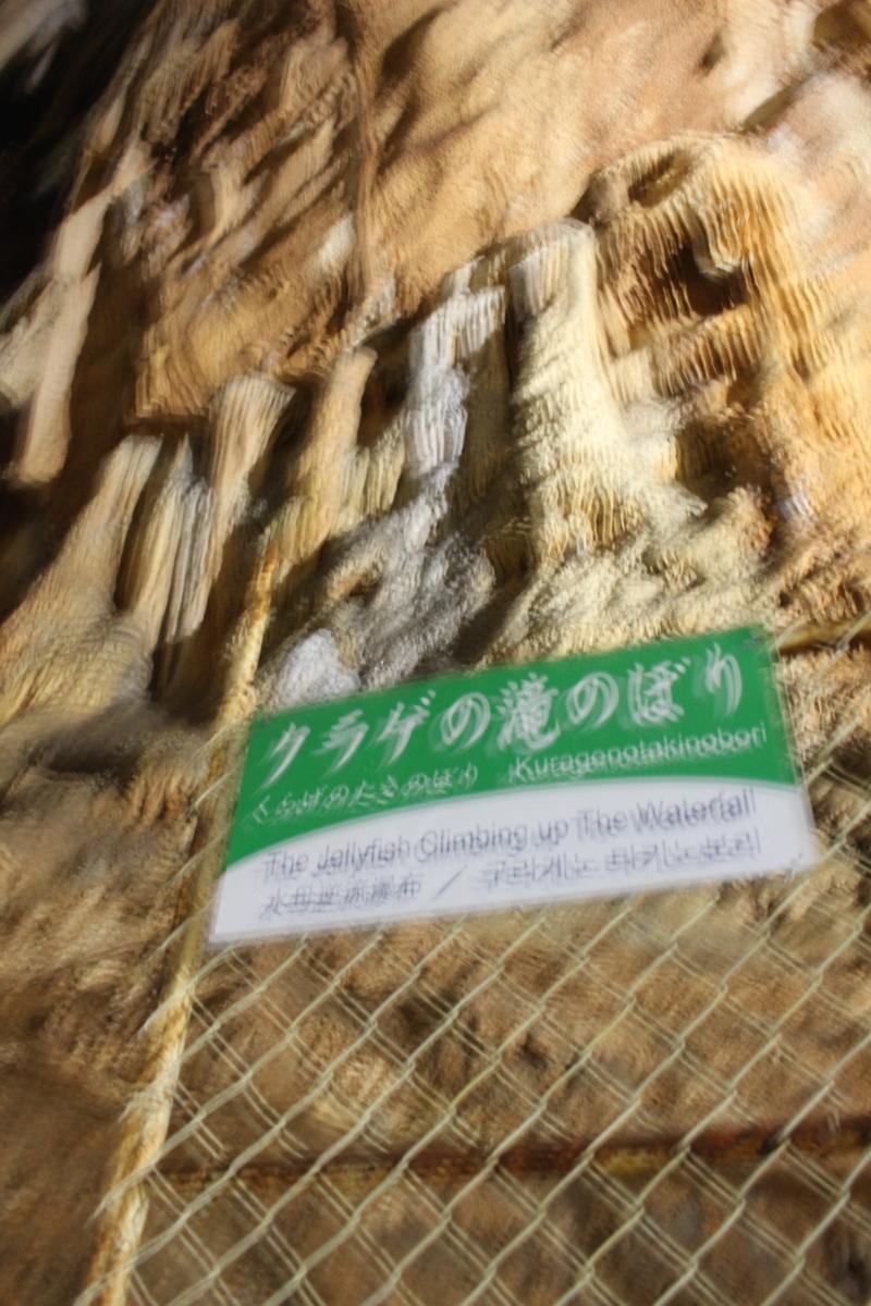 f:id:okuchichibu551:20191117002027j:plain