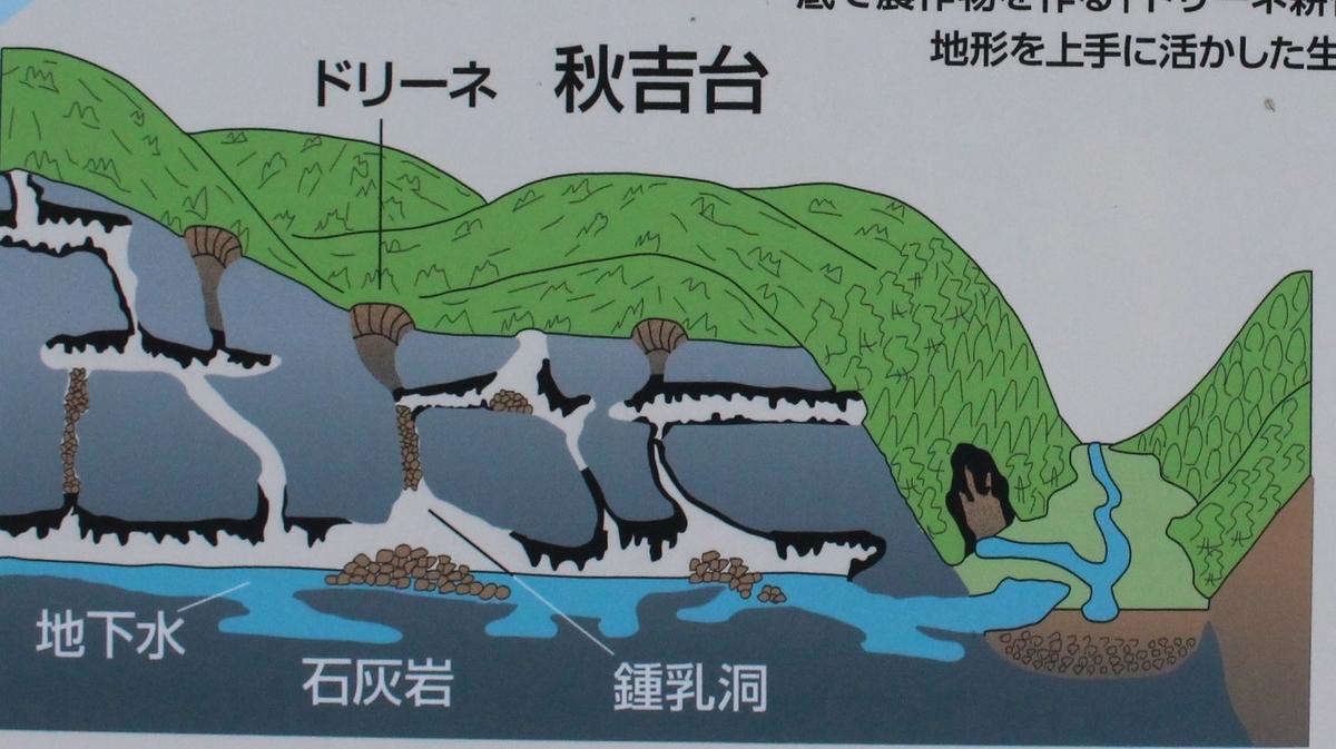 f:id:okuchichibu551:20191117105050j:plain