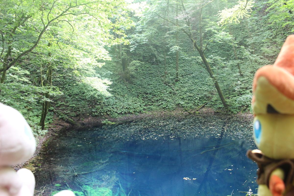 f:id:okuchichibu551:20200926130103j:plain