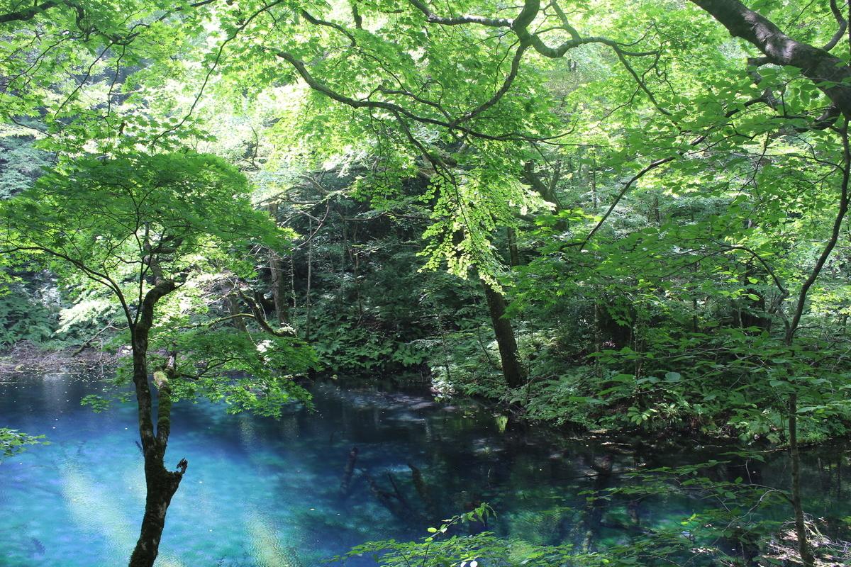 f:id:okuchichibu551:20200926141456j:plain