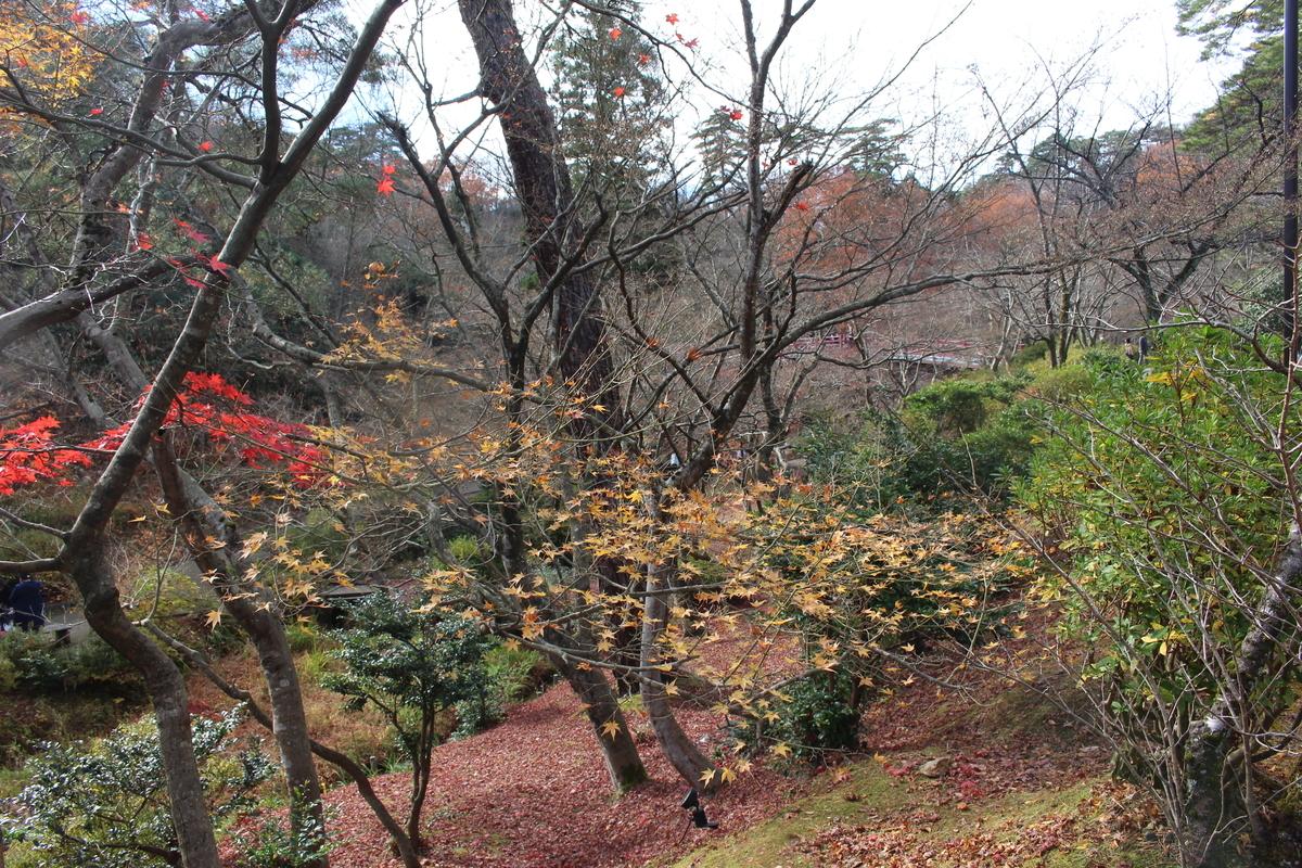f:id:okuchichibu551:20201128124041j:plain