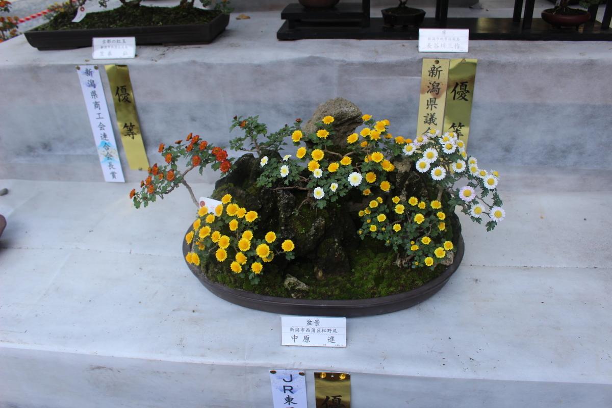 f:id:okuchichibu551:20201128183342j:plain