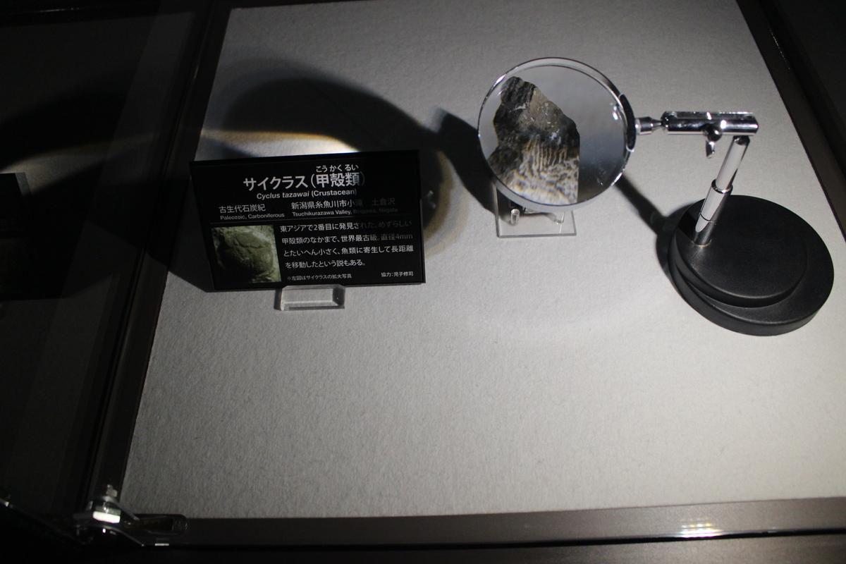 f:id:okuchichibu551:20201213151640j:plain
