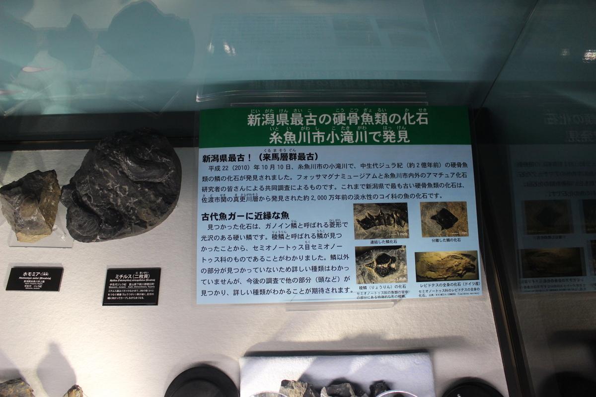 f:id:okuchichibu551:20201213153302j:plain