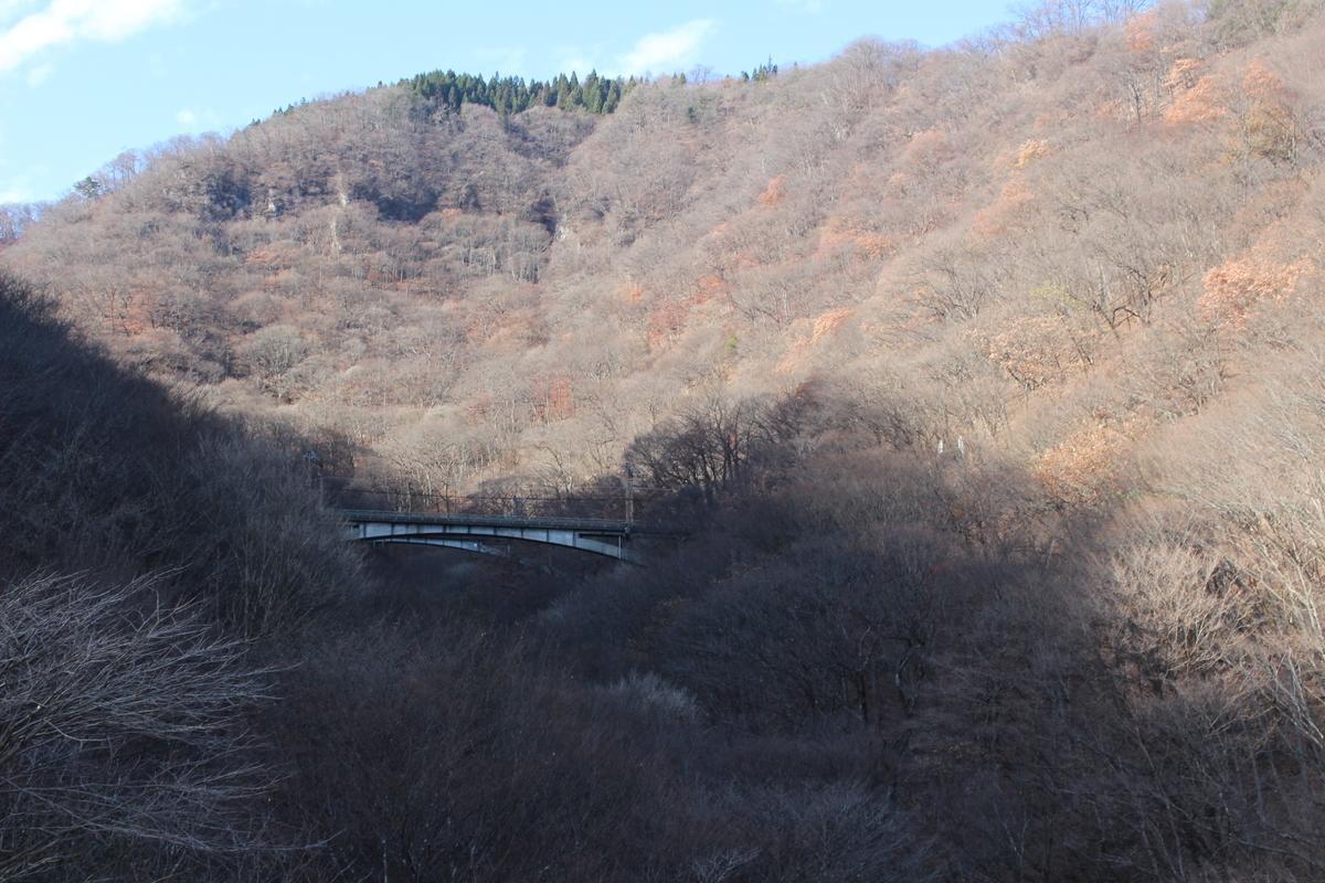f:id:okuchichibu551:20201221225725j:plain
