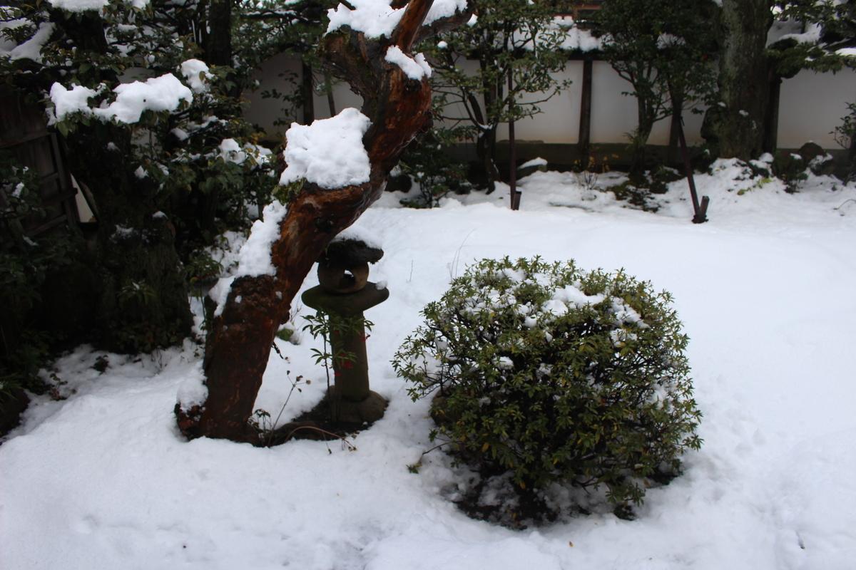 f:id:okuchichibu551:20210215212155j:plain