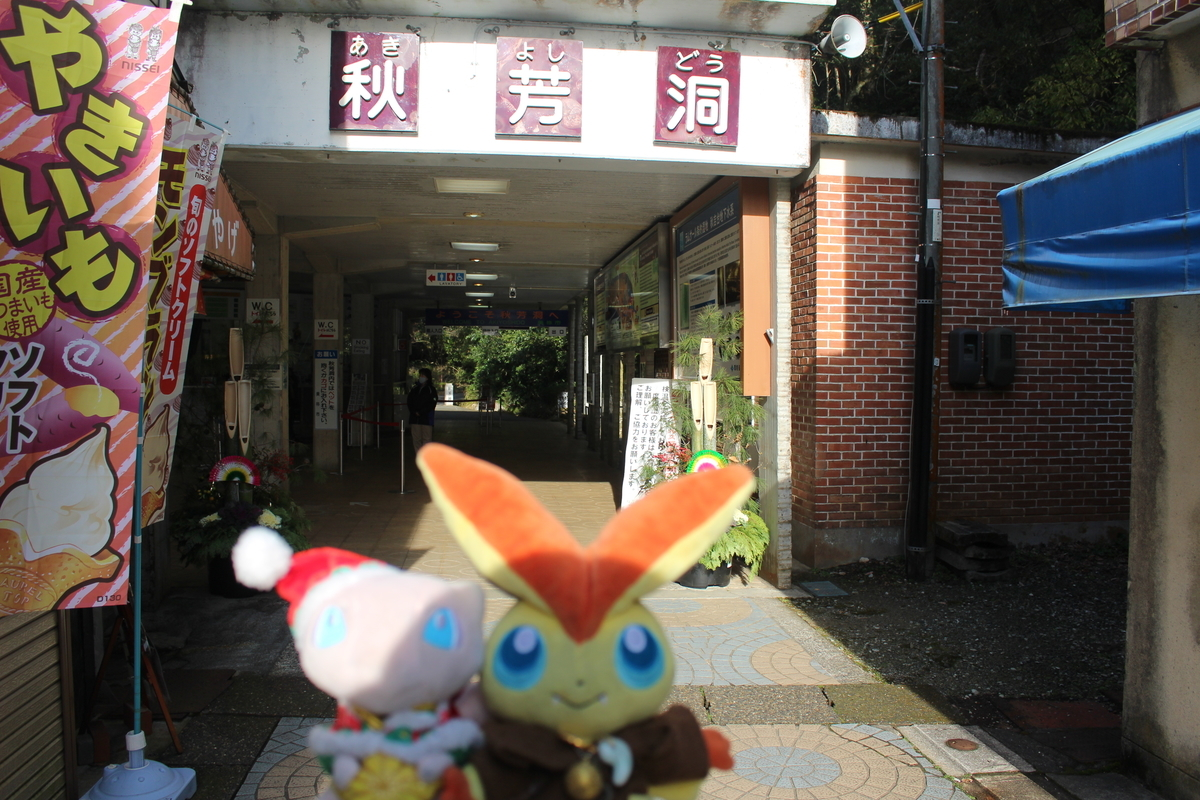 f:id:okuchichibu551:20210309220733j:plain
