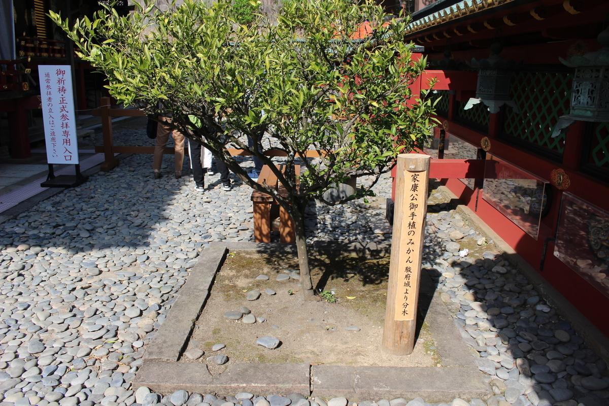 f:id:okuchichibu551:20210410095435j:plain