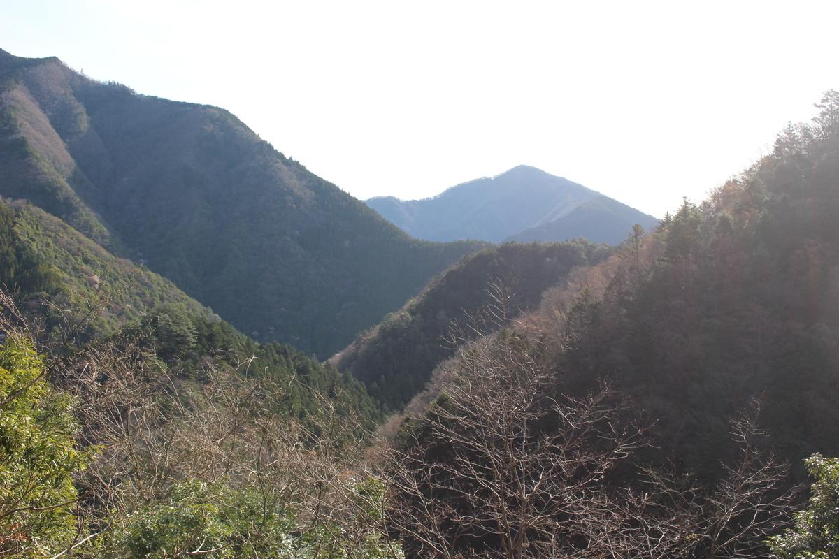 f:id:okuchichibu551:20210418115200j:plain